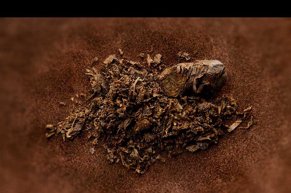 Tabaco en Cuerda